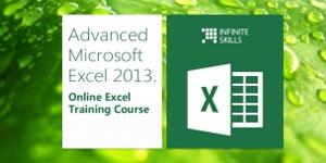 MS Excel 2013 Infinite Skills